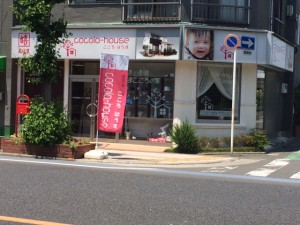 風のない冷暖房の家の バラ色ののぼり旗が 風にのってよく見えます!