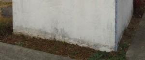 土に接している部分も漆喰のハガレが目立ちます・・・