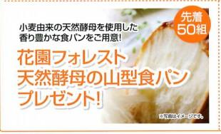 花園フォレスト 天然酵母の山型食パンプレゼント!お早目にお越しくださいね!